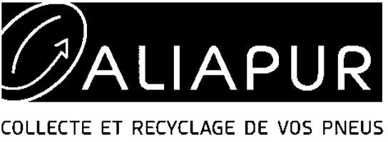 logo-aliapur